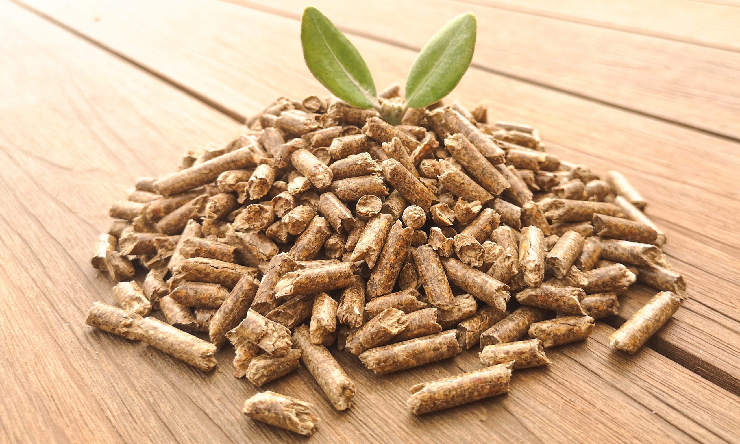 pellets de madera - 4